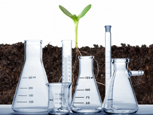 Soil Amendments | Soil Testing